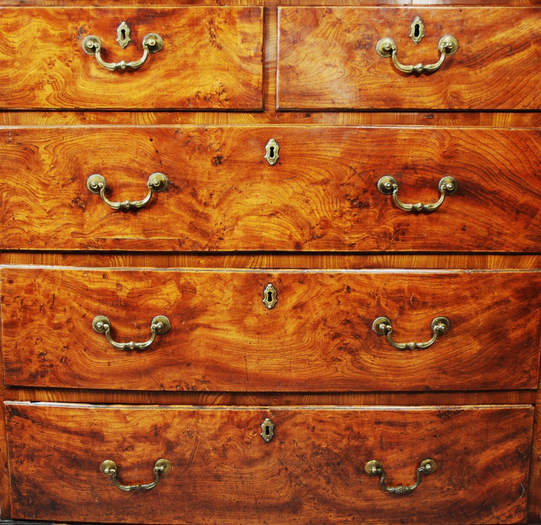 18thc burr elm chest of drawers