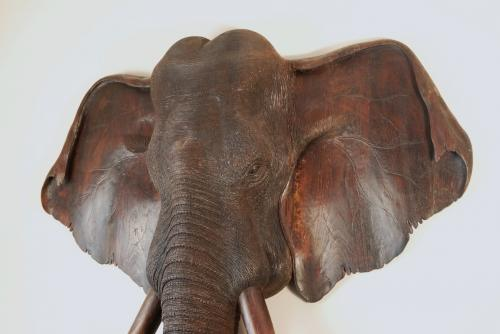 Large 19thc carved wooden elephant head