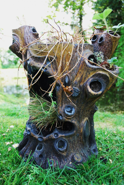 how to kill a tree stump with salt