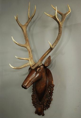 Large life size carved oak stags head trophy