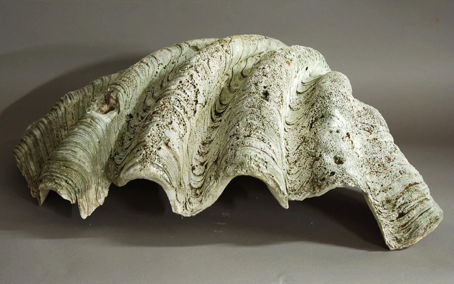 how to make a giant clam shell