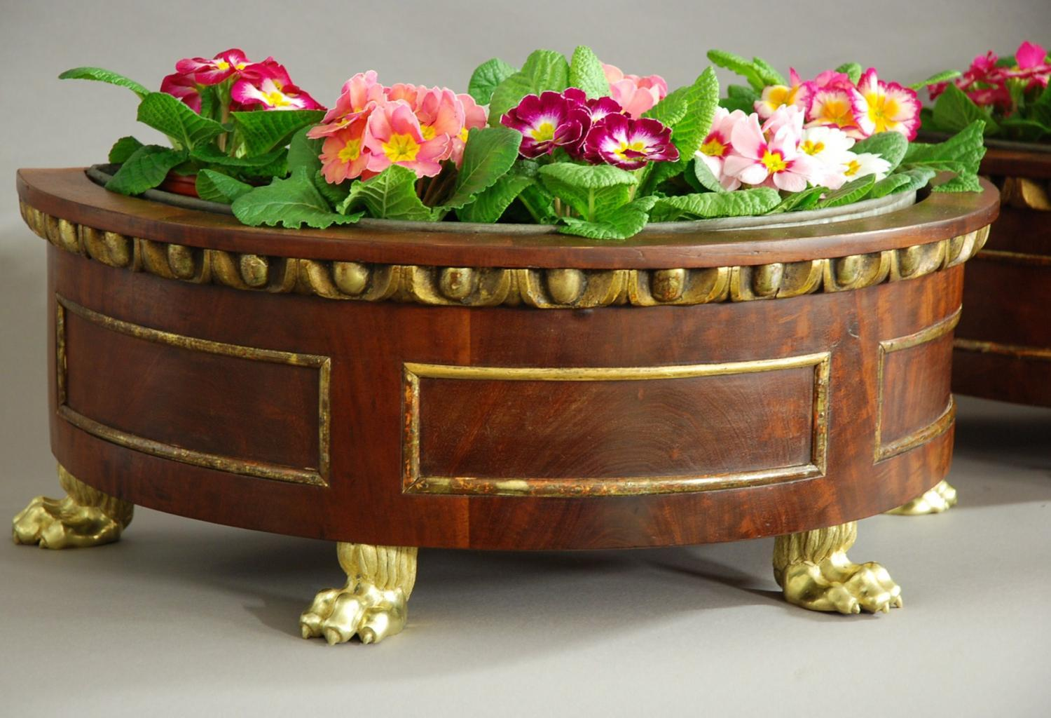 Decorative pair of 19thc mahogany jardinieres in sold archive for Jardiniere decorative