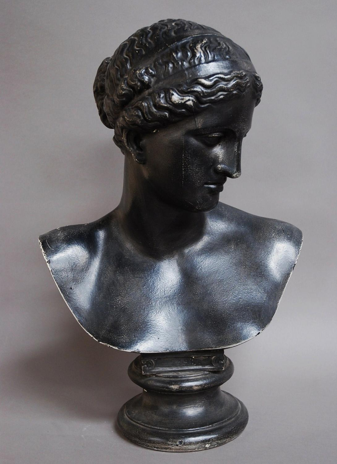 19thc Classical plaster bust by D Brucciani