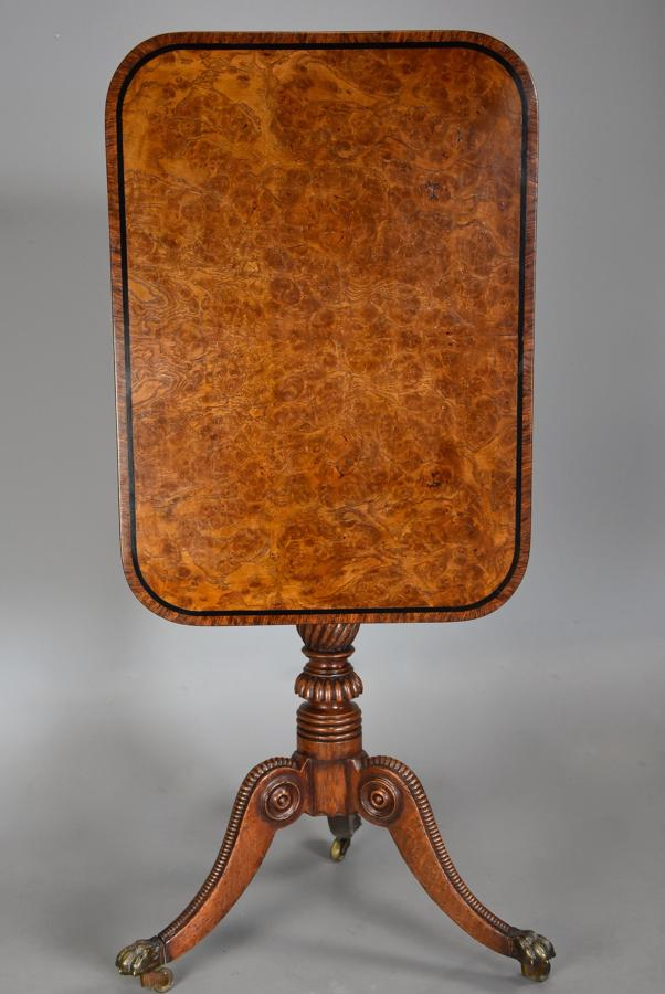Rare fine quality early 19th century Regency burr oak tilt top table